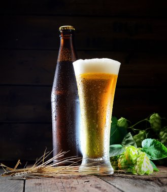 Beer glass with bottle and hops