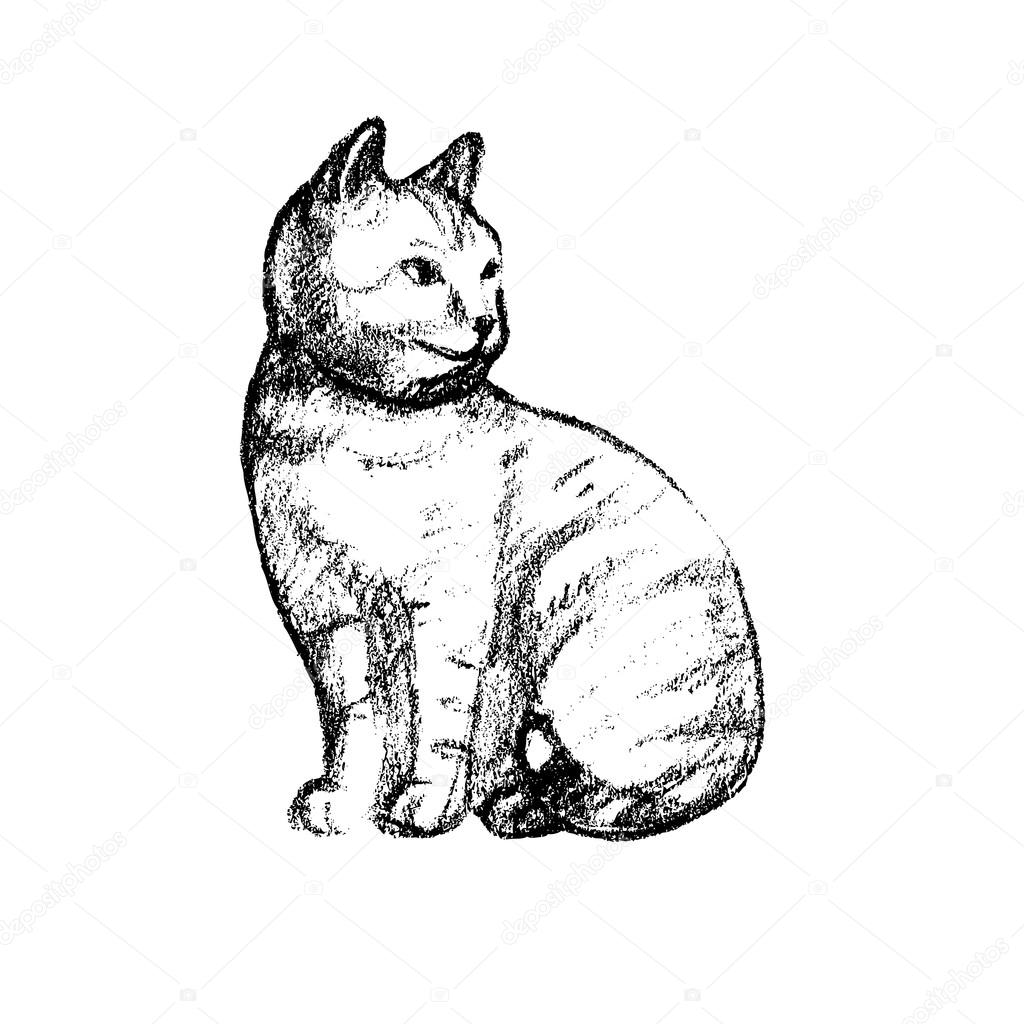 Vektor Illustration Mit Dem Bild Einer Katze Hand Gezeichnet Effekt