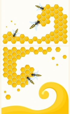 Honeycomb and insects.