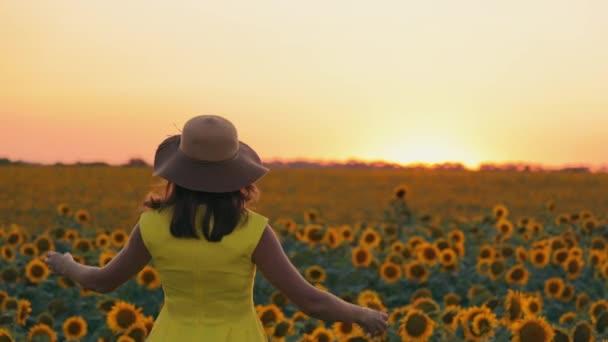 Naplementekor a nő a napraforgók mezején felemeli a kezét, kalapot tart a kezében, és a fejére teszi. Fiatal lány sárga ruhában egy napraforgós mezőn naplementekor