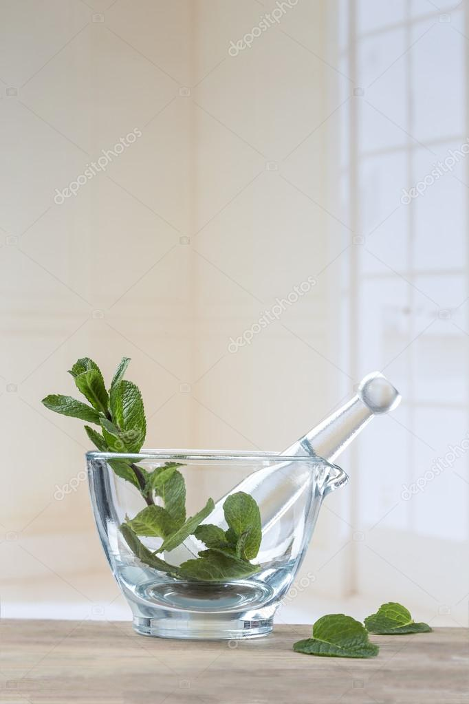 fresh natural green mint in white glass mortar