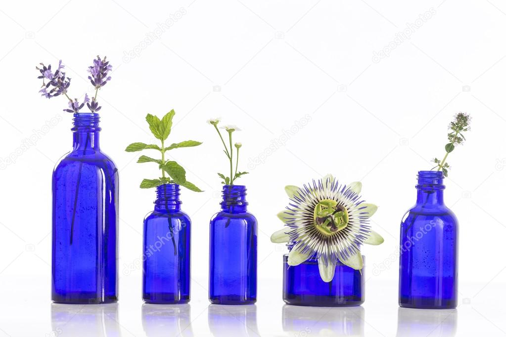 Blue Bottles of essential oil with fesh herbs