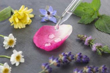 Floral Water,herbal medicine dropper plant petal