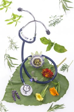 Alternative medicine herbs and stethoscope on leaf