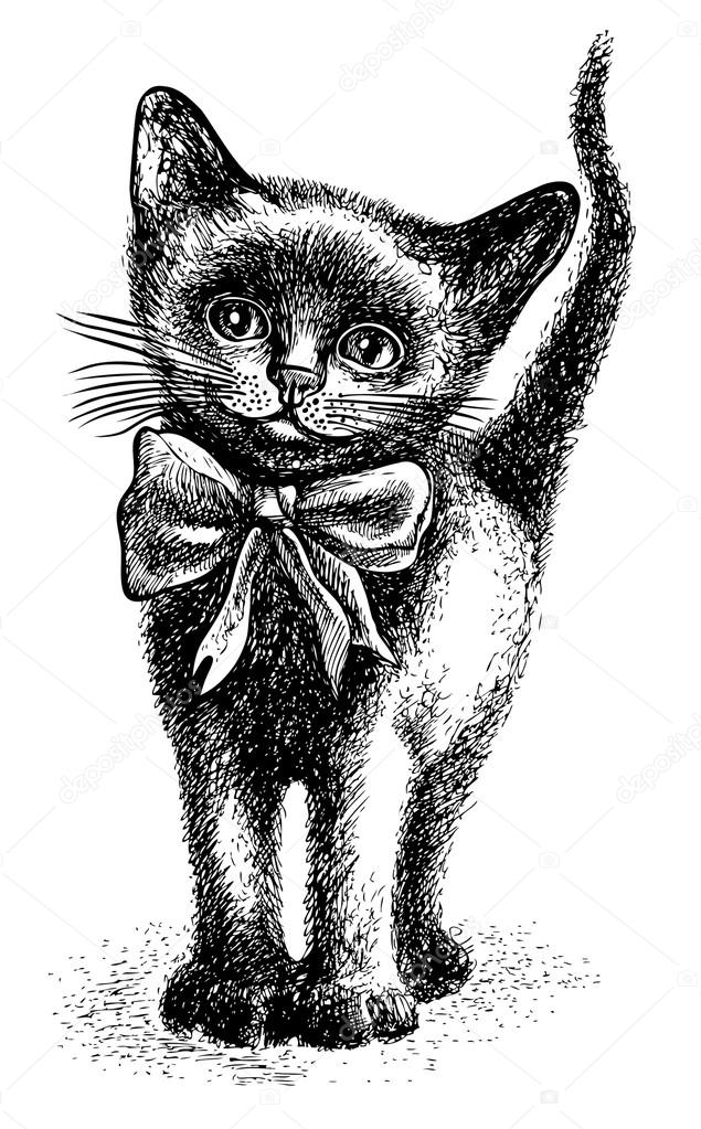 black cute kitten with bow sketchy style hand drawn graphic