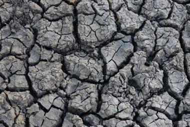 Bare Dry Earth