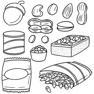 vector set of beans and bean products