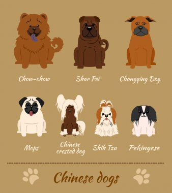 Cginese breed of dogs