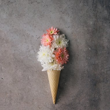 Pink and white flowers in ice cream cone