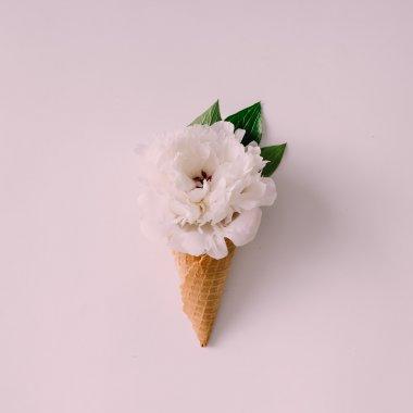 Icecream cone with white flower