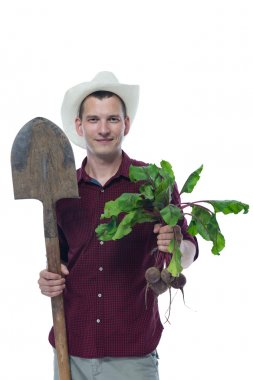 farmer with a shovel keeps beets with green tops