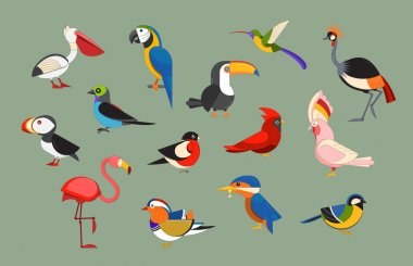 Birds Icons Set