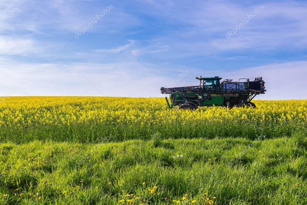 Agriculture Vehicle on Canola Field