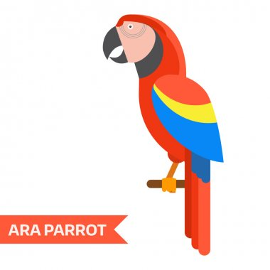 Red Ara Tropical Parrot