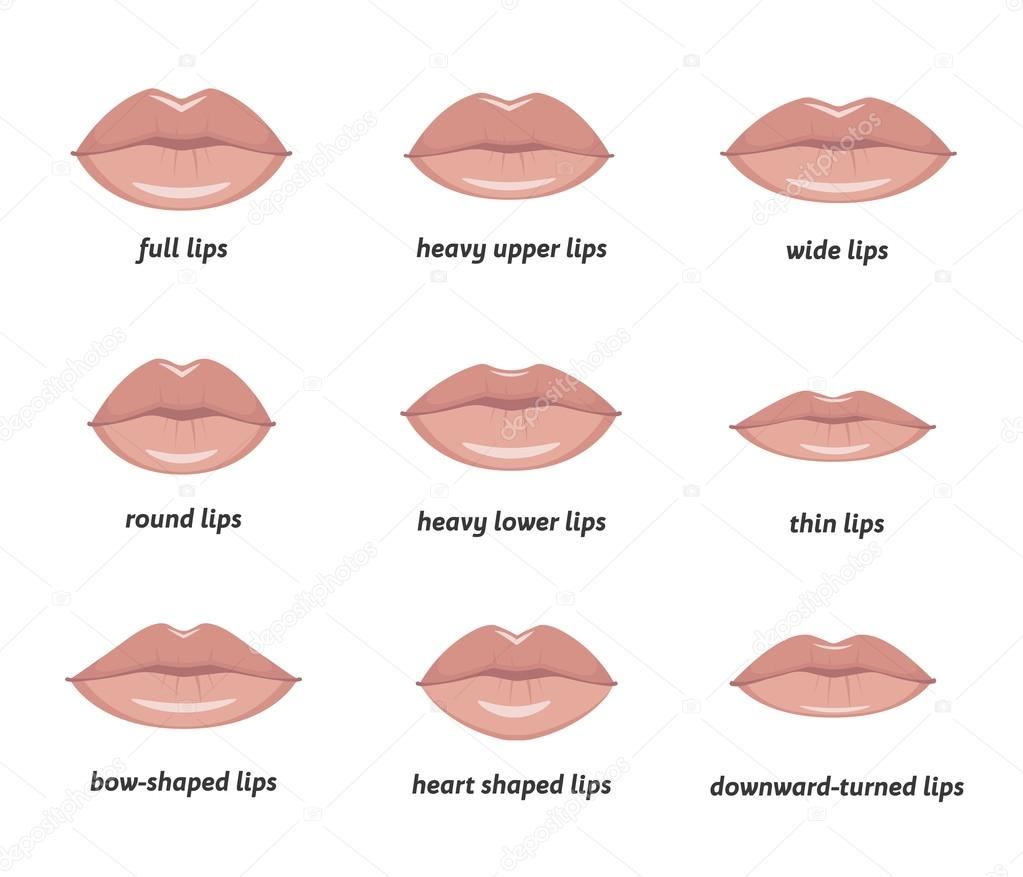 Different types of mouth shapes | Various types of woman ...