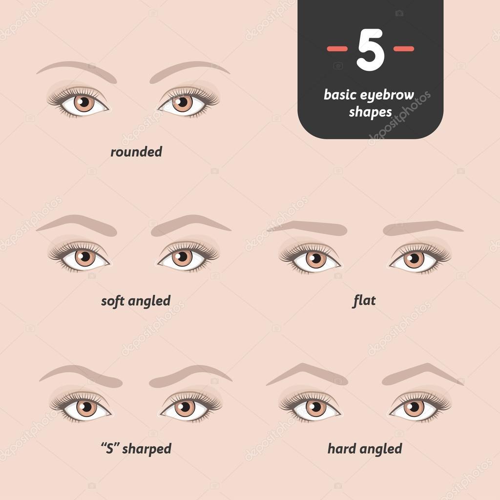 5 grundlegende augenbrauen formen stockvektor