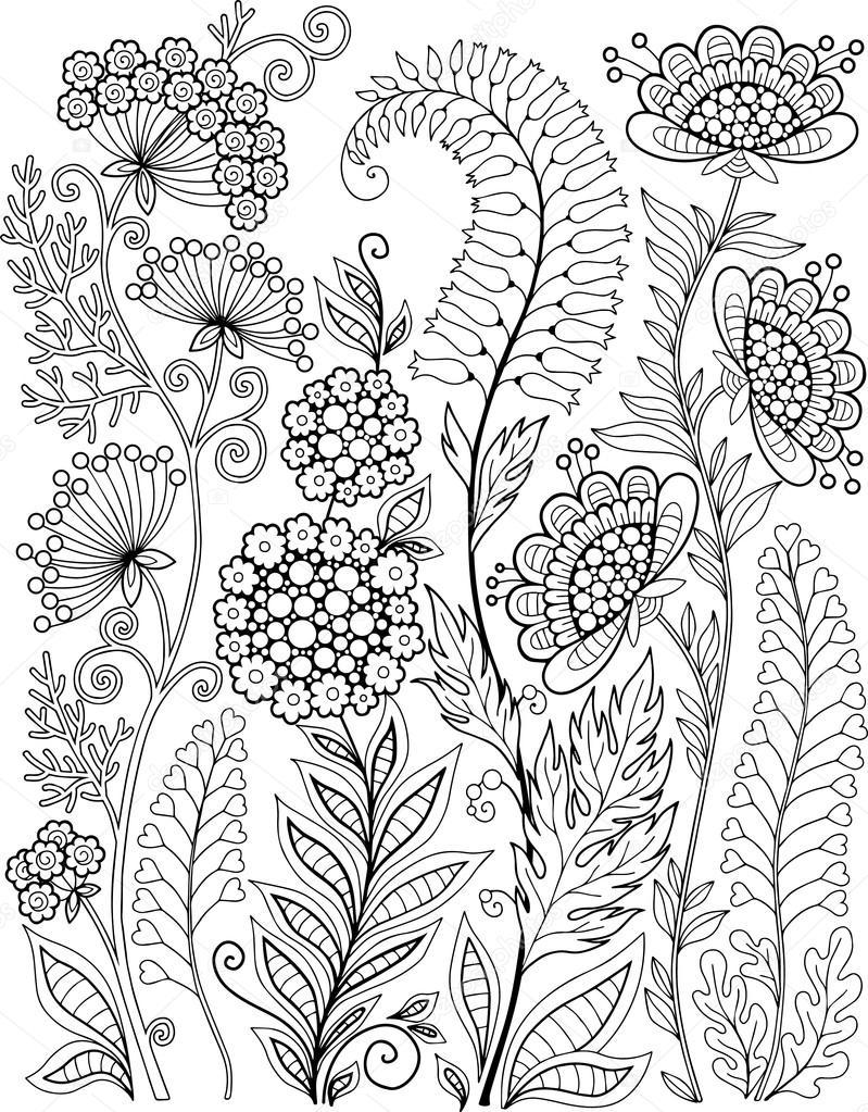 Decorativas flores silvestres y hierbas — Vector de stock © natasha ...