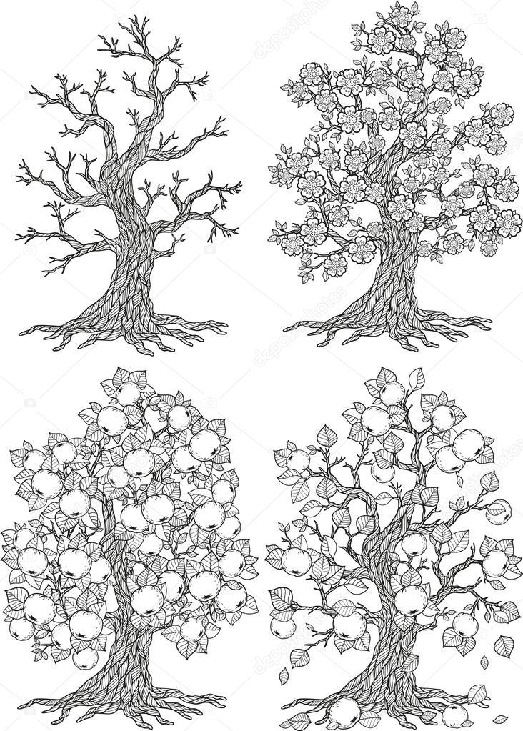 Vektör Elma Ağacı Ağaç Sezon Sonbahar Kış Yaz Bahar Stok
