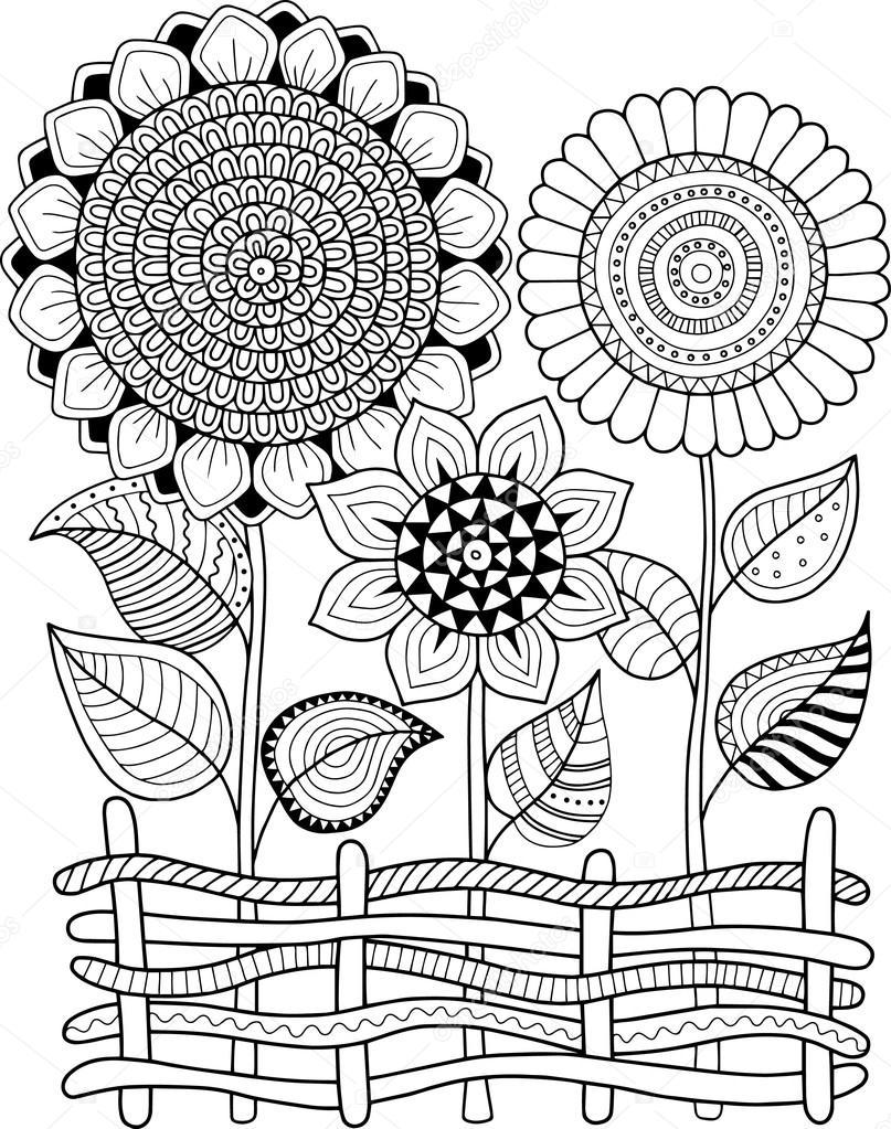 Vektör Doodle Ayçiçeği Yetişkin Için Boyama Kitabı Yaz çiçek