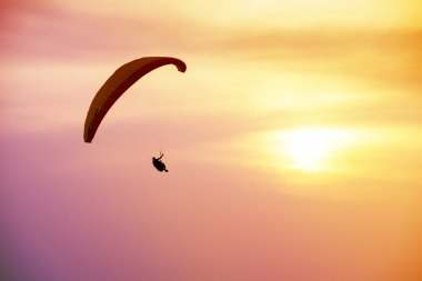 Paraglider flies on background of sea