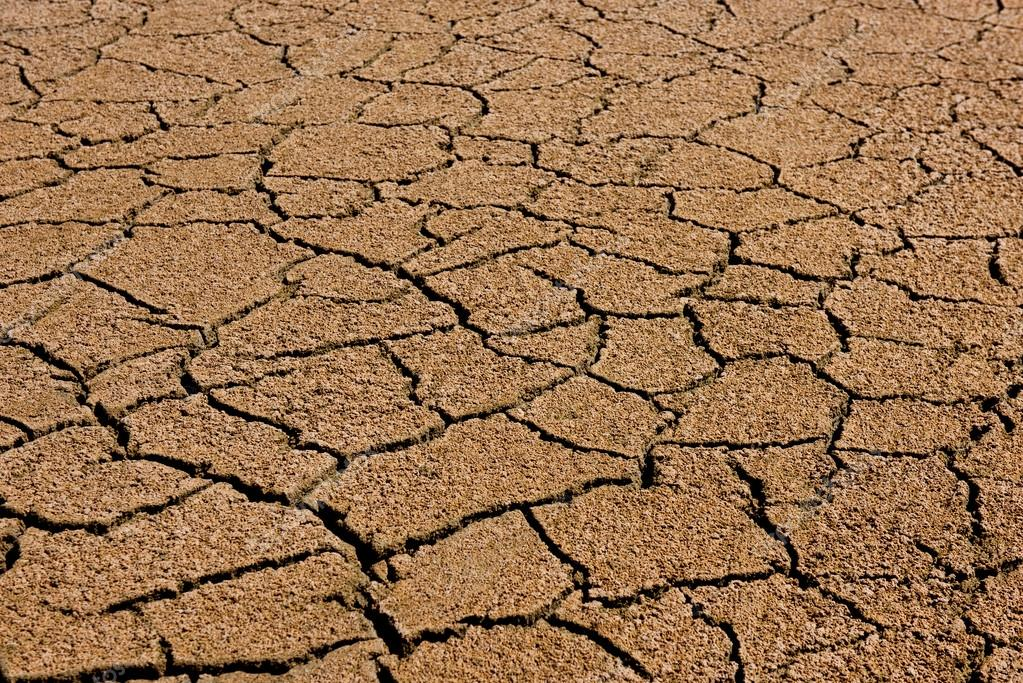 Dry cracked earth