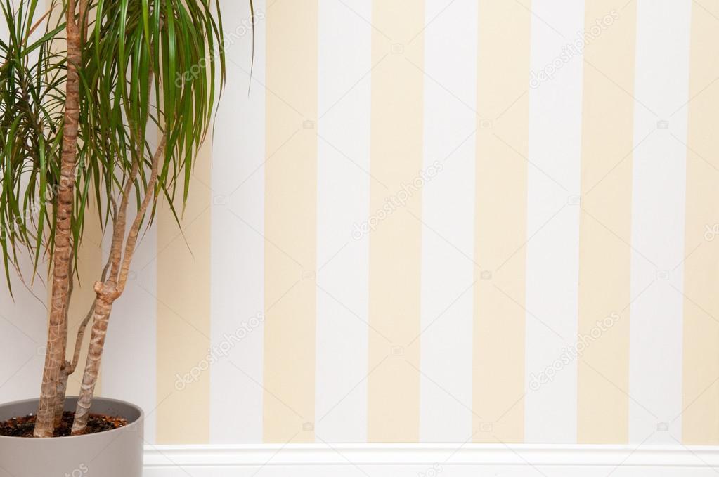 Pareti A Strisce Beige : Stanza vuota con la parete a strisce u foto stock tommoh