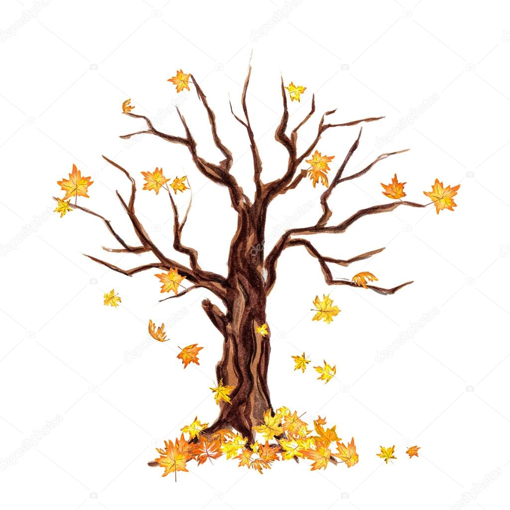 Sulu Boya Kuru Ağaç Stok Foto Inspiringvectorgmail