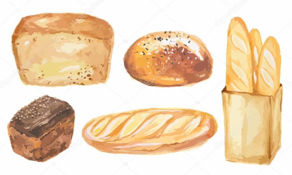 Watercolor Bread Set Different Kinds Of Bread As Baguette Loaf Cake Protein And Whole Grain Nutrition Premium Vector In Adobe Illustrator Ai Ai Format Encapsulated Postscript Eps Eps Format