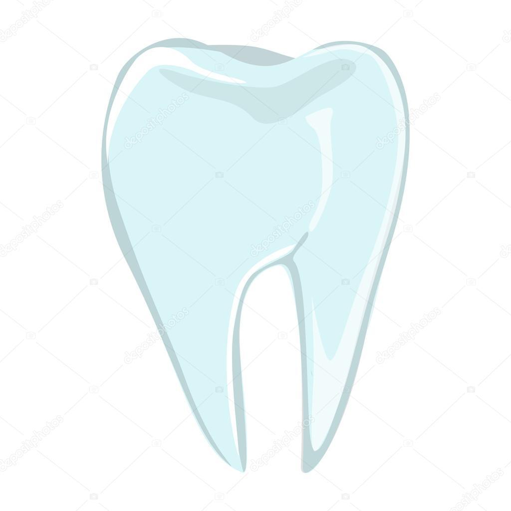 Realistischen menschlichen Zahn — Stockvektor © inspiring.vector ...
