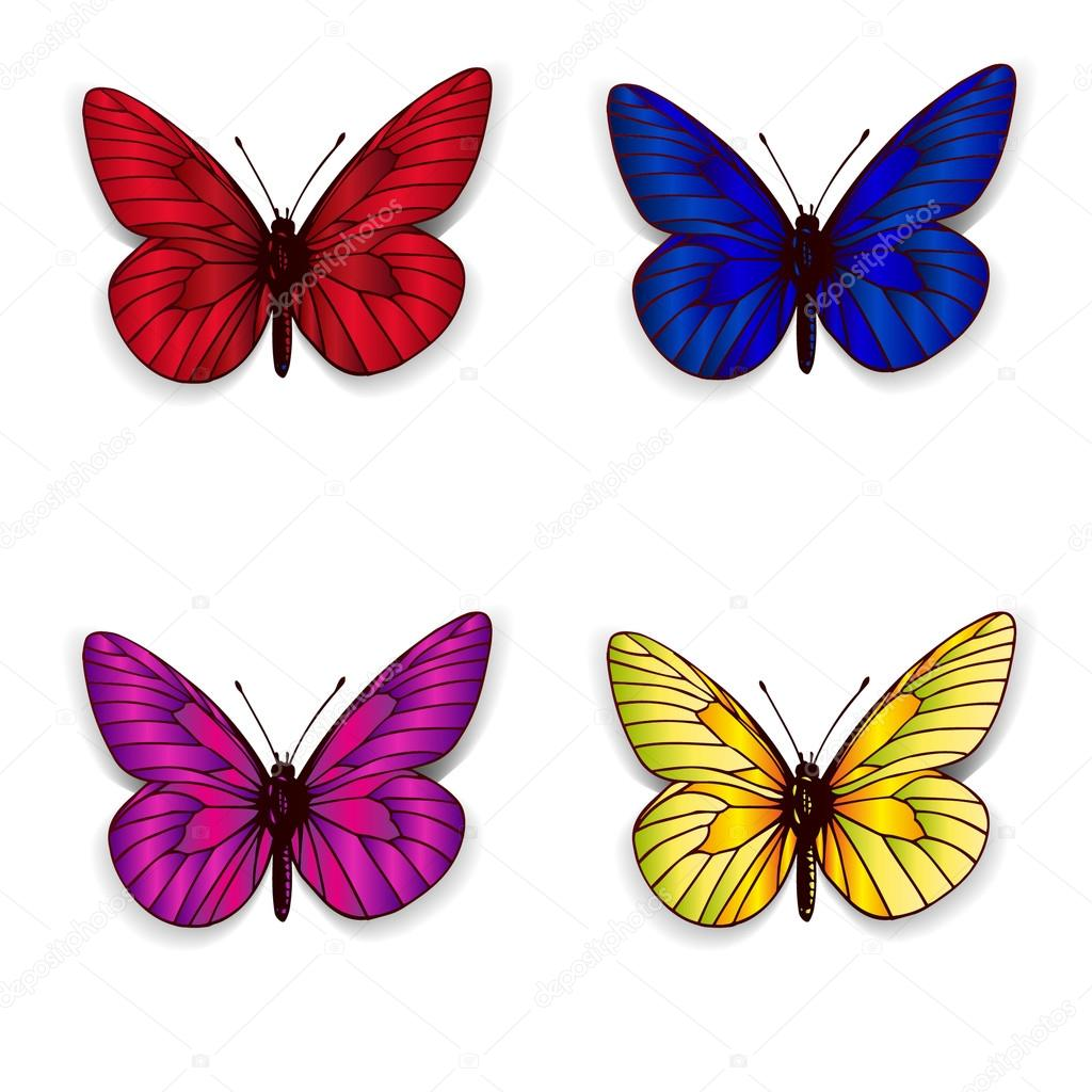 Big collection of colorful butterflies. Vector — Stock Vector ...