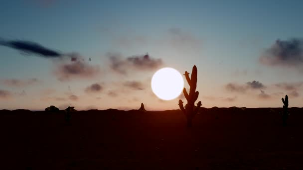 Time lapse, fast moving, fiery sunset clouds rush through the silhouettes of cactuses in the desert.