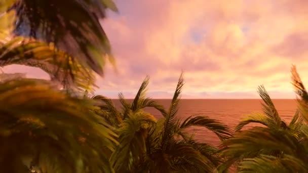 Syté barvy, pohybující se s větrem palm stromy letní pláž sunset