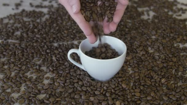 pouring coffee beans in a cup