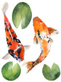 Photo Watercolor oriental rainbow carp with water lily leaves set. Koi fishes isolated on white background. Underwater illustration for design, background or fabric