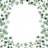 Fotografie Watercolor green floral frame card with eucalyptus round leaves. Hand painted border with branches and leaves of silver dollar eucalyptus isolated on white background. For design or background