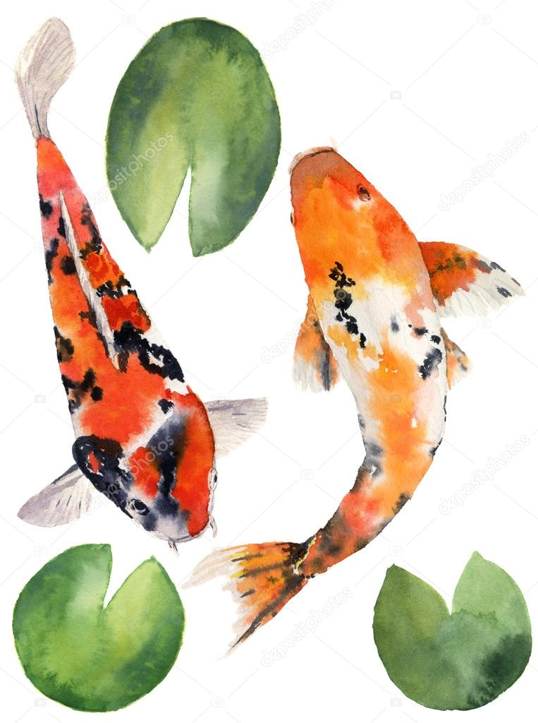 Watercolor oriental rainbow carp with water lily leaves set. Koi fishes isolated on white background. Underwater illustration for design, background or fabric