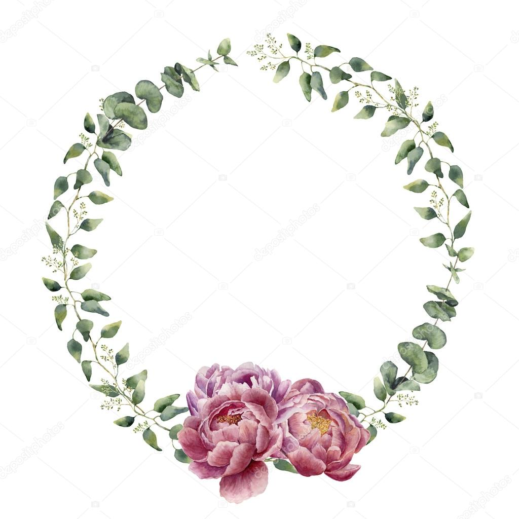 Watercolor floral wreath with eucalyptus, baby eucalyptus leaves and peony flowers. Hand painted floral border with branches, leaves of eucalyptus and flowers isolated on white background. For design