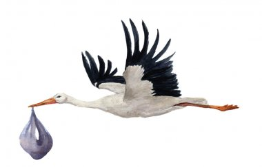 Watercolor hand painted flying white stork with boy baby. Hand painted ciconia bird illustration isolated on white background. For design, prints or background