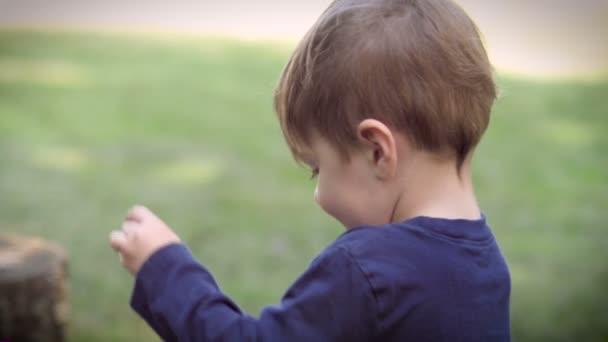Preschool cute boy playing with a dinosaur toy outside