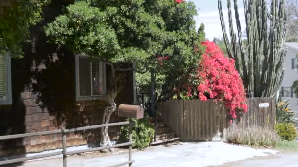 Establishing of a home with a large red bougainvillea, and wooden shingles