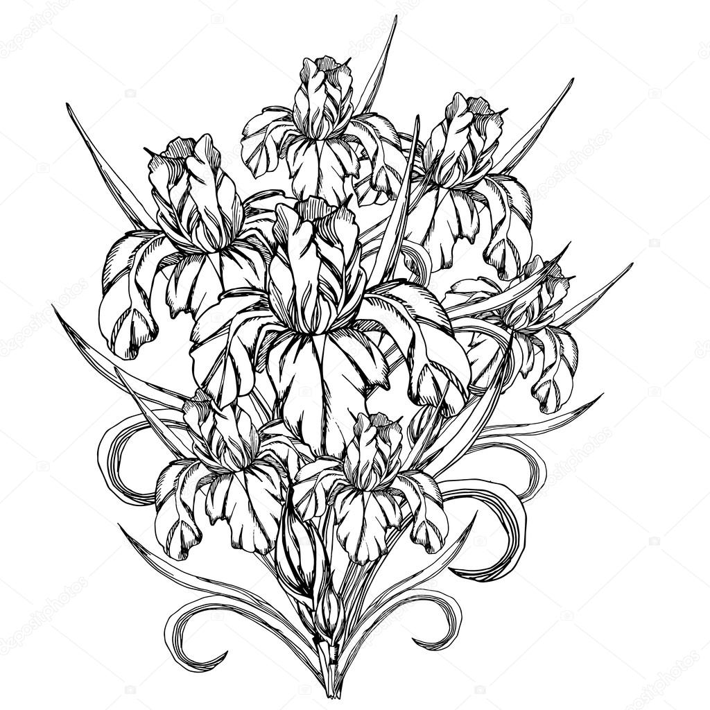 Vector decorative of iris flowers stock vector olesiaudova sketch flowerctor decorative trace of iris flowerstemplate for coloring pages for adults coloring dook a bouquet of flowers with zentangledoodle izmirmasajfo
