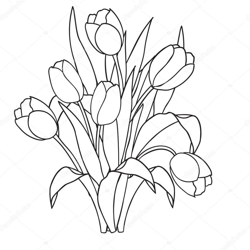 Lale çiçek Süs Siyah Ve Beyaz Boyama Sayfaları Stok Vektör