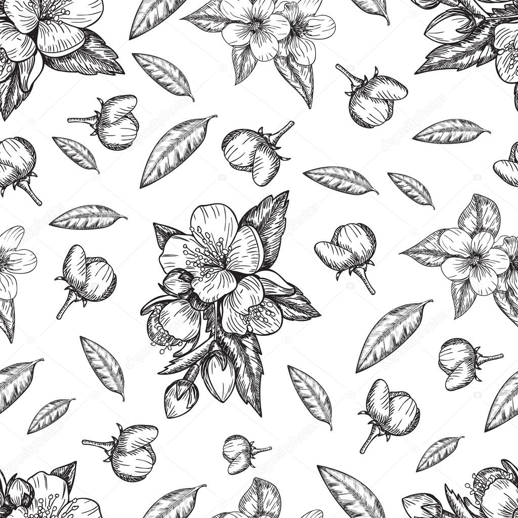 Seamless pattern flowers and leaves of the apple tree . Vector sketch illustration . Hand painted