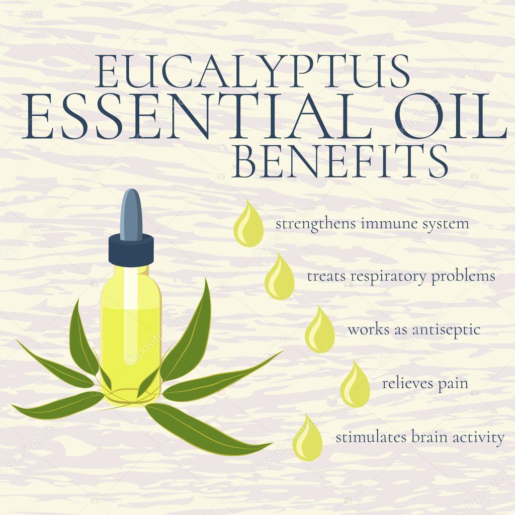 Eucalyptus essential oil benefits infographics