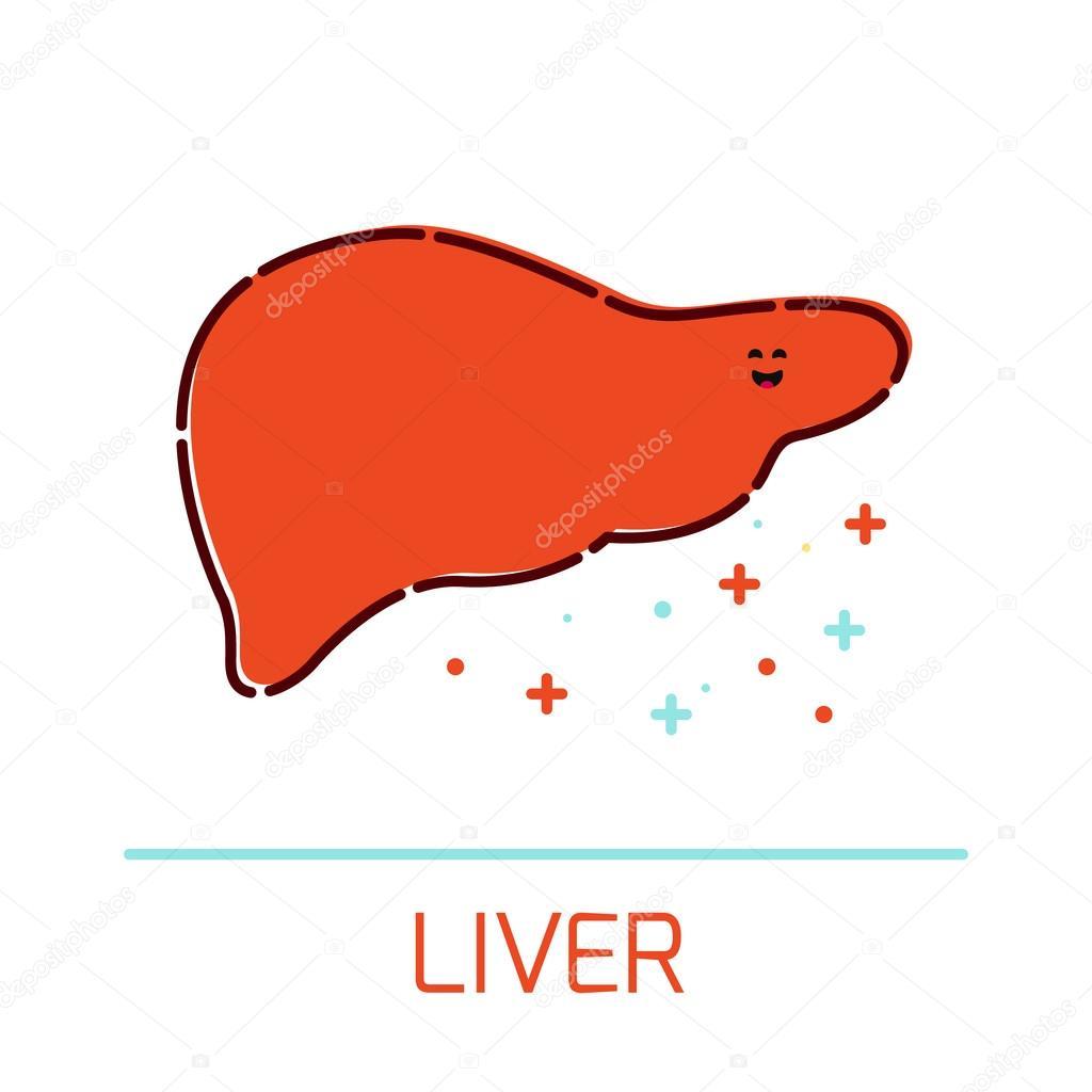 Icono de dibujos animados hígado — Archivo Imágenes Vectoriales ...