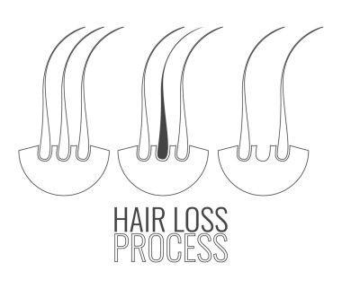 Hair follicles loss process