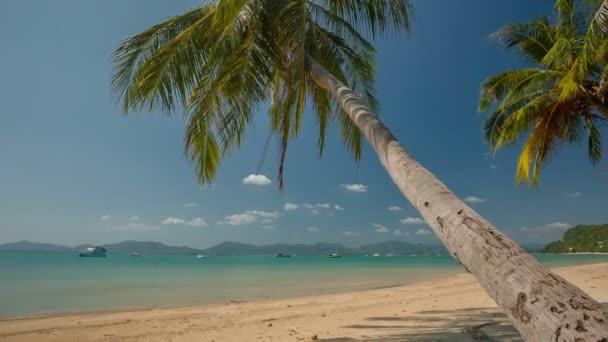 Thajsko den lehké letní čas phuket ostrov slavný palm beach panorama hd