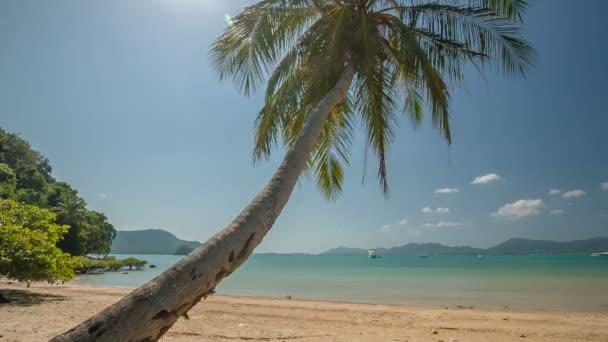 Thailand summer day paradise palm beach panorama hd phuket — Stock Video