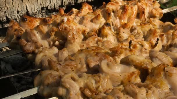 Plátky kuřecího masa na špízu s spalování uhlí a grilování