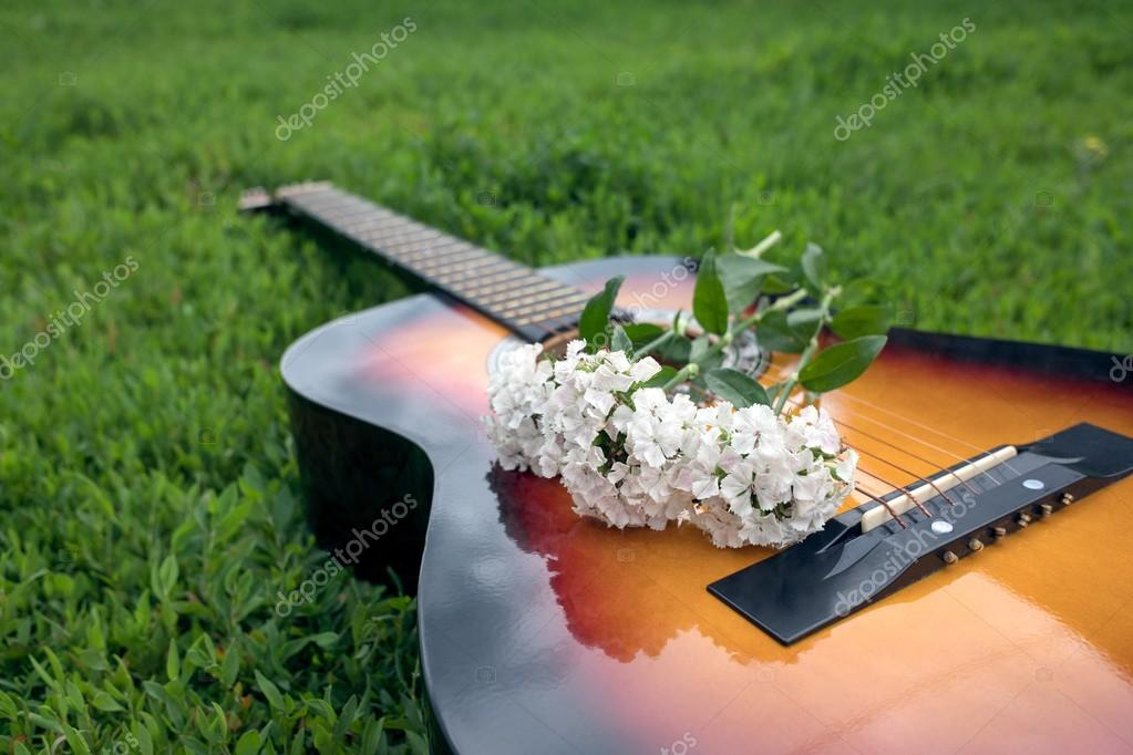 Acoustic guitar in the green grass